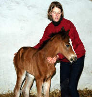 5 hours old: filly by Freudenfest out of Schwalbenflair by Exclusiv
